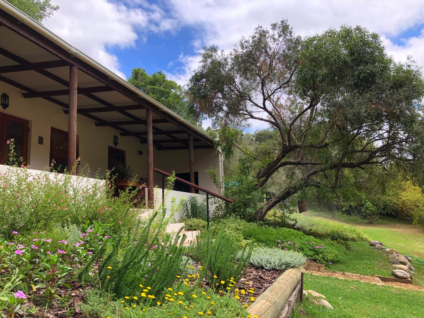 fynbos and herb garden to delight!